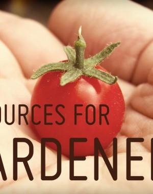 garden-2-copy1