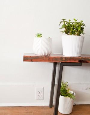 plant-bench2