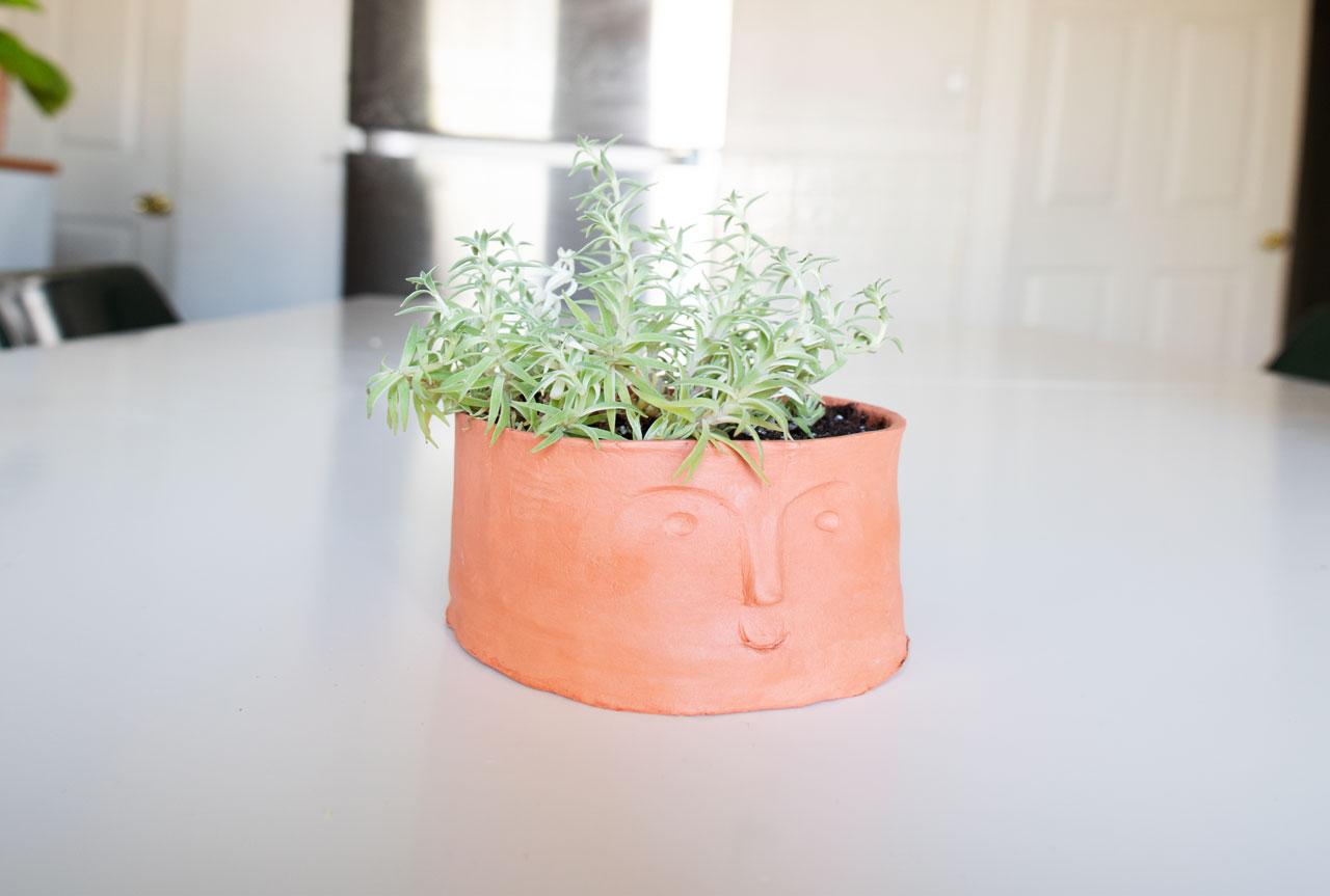 Quarantine-pots-2